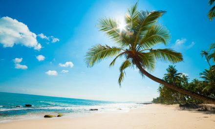 De mooiste Bounty eilanden ter wereld