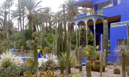 De vijf bezienswaardigheden in Marrakech die u gezien moet hebben
