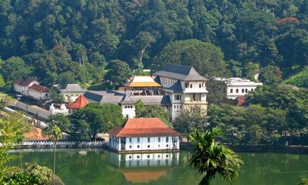 Tien redenen om naar Sri Lanka te reizen!