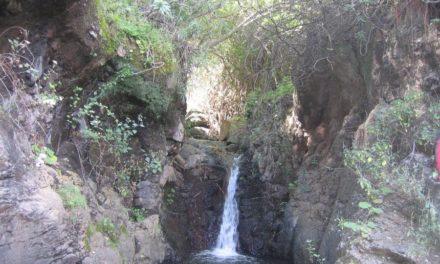 Gran Canaria: een zomerse bestemming in de winter
