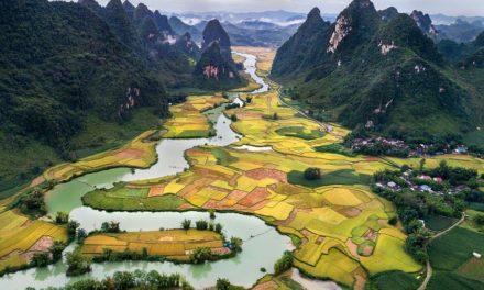 De beknopte reisgids voor Vietnam